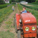 David et le tracteur